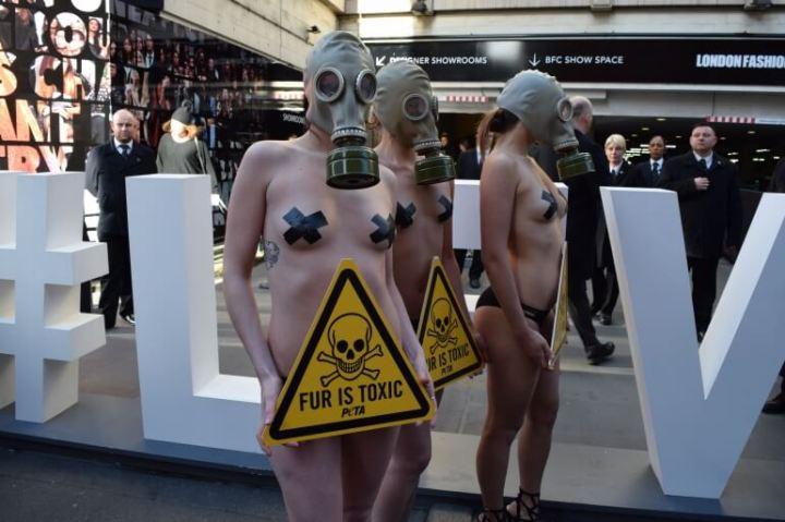 LFW-Toxic-Fur-10-770x513